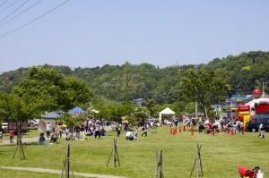 The Matsuri in the Park